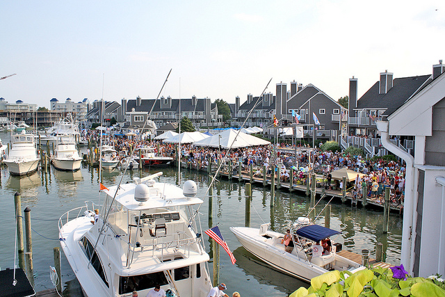 White Marlin Open 2.jpg